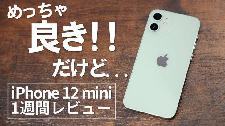 【正直レビュー】iPhone 12 miniを1週間使って12 ProやSEとどっちが良かったかぶっちゃけます